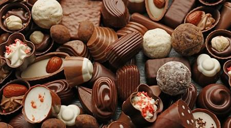 Bruno Meyer Chocolatier