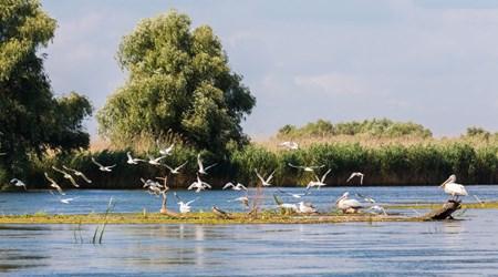 Tulcea & the Danube Delta