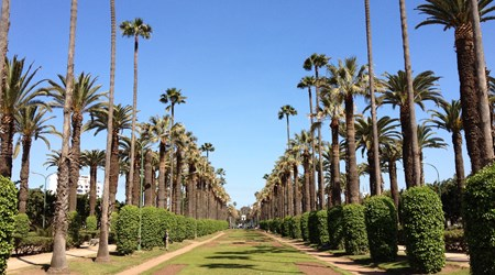 Ligue Arab Park