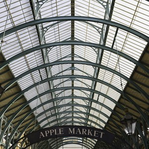 Glass and iron ceiling of the main market hall at Covent Garden Market in London / Andres Garcia Martin/Shutterstock.com