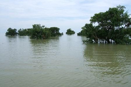 Tonle-Sap-Lake