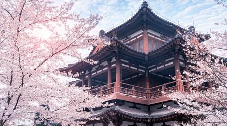 Qing Long Temple