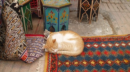 Chez Hamidou