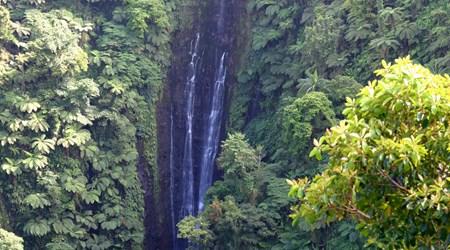 Papapapai-Tai Falls