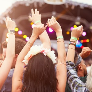Audience with hands in the air at a music festival / Monkey Business Images/Shutterstock.com
