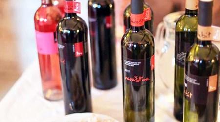 Winery Birin