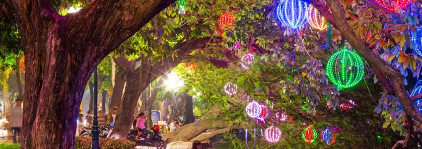Lights in Hanoi garden