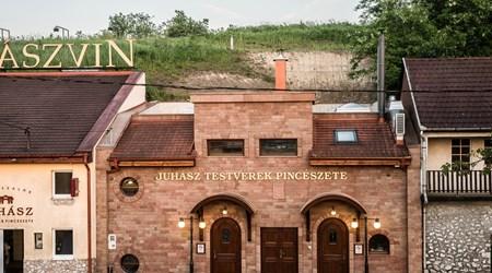 The Juhasz Sibling's Winery – Wine Cellar Nr. 40.
