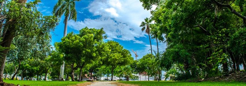 Miami Florida in the Summer