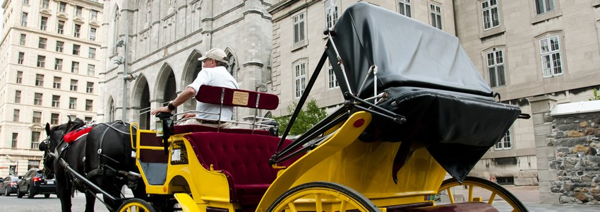 Horse-Drawn Carriage - Montreal - Canada