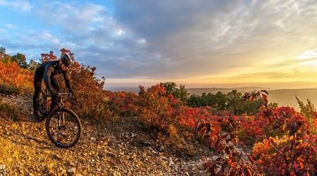 Down-hill biking – Eged