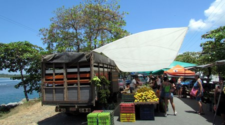Ferias del Agricultor - Farmer's Market