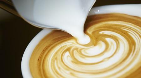 Javelin Coffee & Tea
