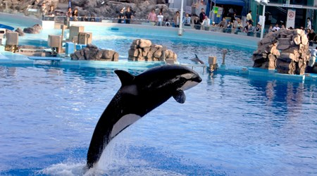 Port of Nagoya Aquarium