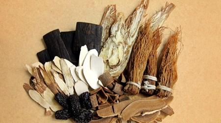 Huqingyutang Chinese Medicine Museum