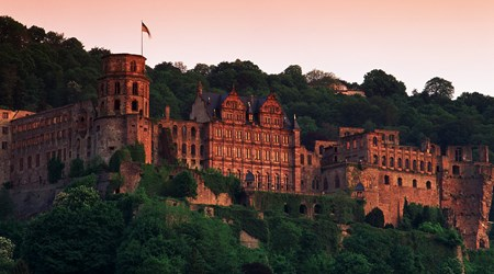 Heidelberg Castle (with the Barrel Cellar and the German Pharmacy Museum)