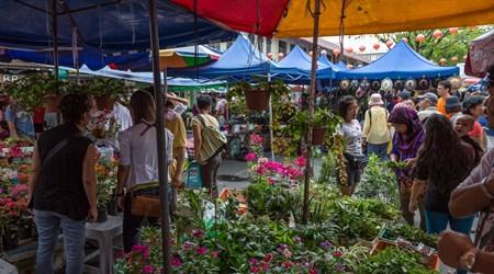 Gaya Street Market