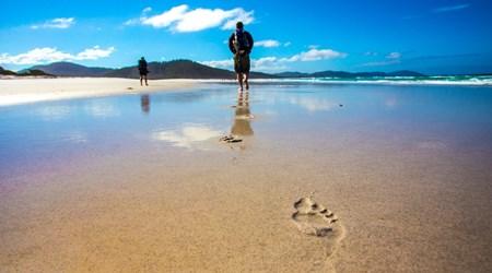 The Freycinet Experience Walk