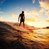 Homegrown Surfschool