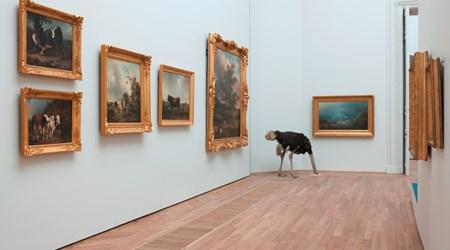 Musée d'arts