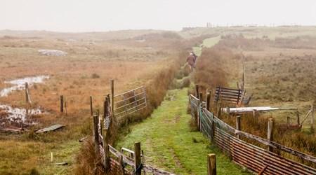 Alluring Landscapes - Derrigimlagh Bog