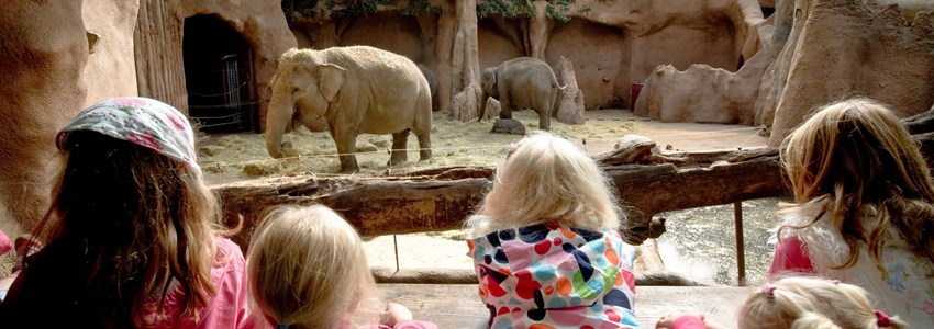 Rotterdam Zoo