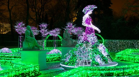 The Royal Garden of Lights