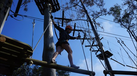 Trees Adventure Nowra Park