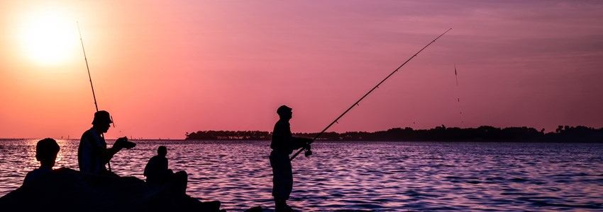 Fishermen fishing in redsea at sunset