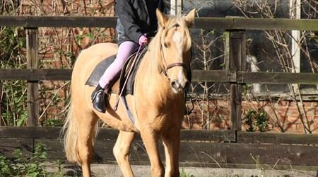 Minorca a Cavall