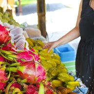 Magsaysay Fruit Stands