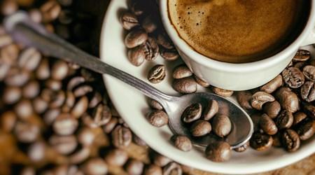 White Resto & Café
