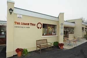 The Lemon Tree Catering & Cafe