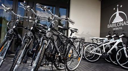 Bike tours/ bike rental