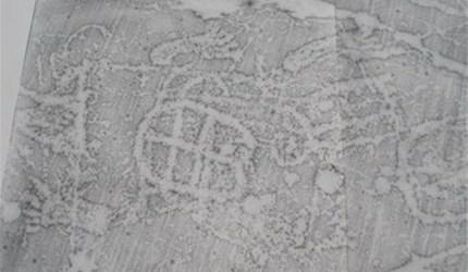 Rock carvings in Järrestad