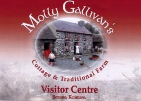 Molly Gallivan's Cottage &Traditional Farm
