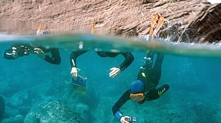 The underwater trail