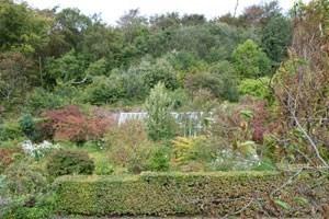 Salthill Garden