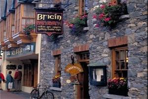 Bricin