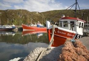 Cape Clear - Oileán Chléire