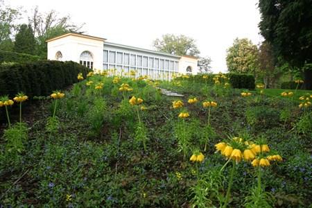 Burg Garden
